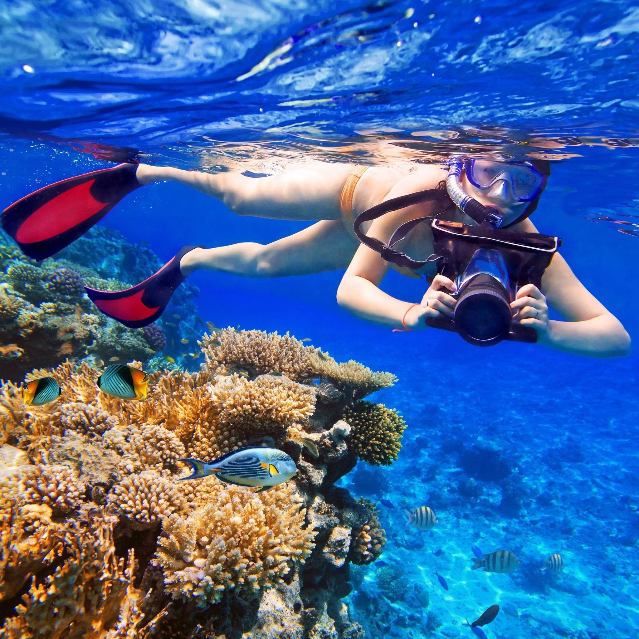 Snorkeling-_Jamaica-Ocean-View-Villa-Ocho Rios