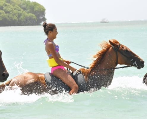 Horse Ridding in Ocho Rios Jamaica