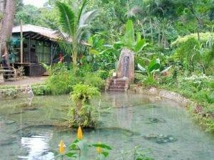 Coyaba River garden Museum Ocho Rios