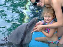 Dolphin Encounter Kids Ocho Rios